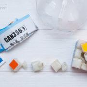 gans-356-1
