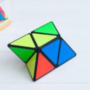 Sheng Shou Pyraminx 2x2