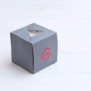 LimCube 2x2 Pyraminx - Octahedron